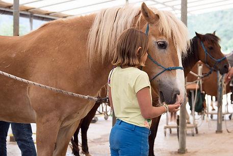 Passeggiate a cavallo per bambini a Cavedine