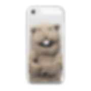 Glove and Boots, Fafa the Groundhog, iphone case, youtube, puppets,