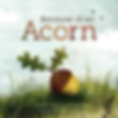 because of an acorn.png