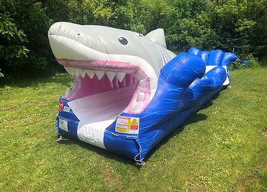 Shark Bite Surf & Slide
