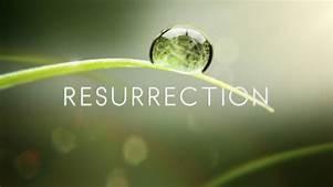 Believe Jesus Resurrects