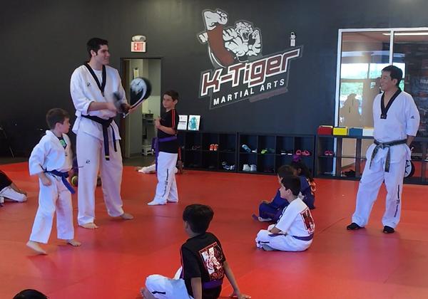 ktiger martial arts