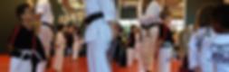 k-tiger martial arts