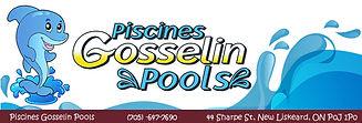 gosselinpool3 (1).jpg
