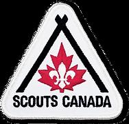 Scouts-Badge.webp