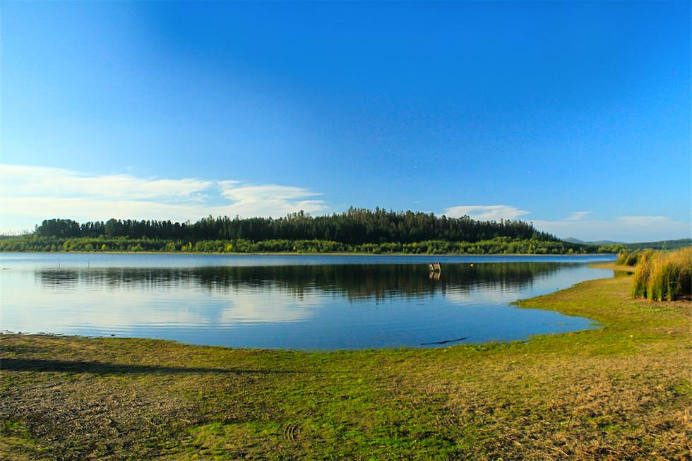 Reserva Nacional Lago Peñuelas – Región de Valparaíso – Chile. 2018
