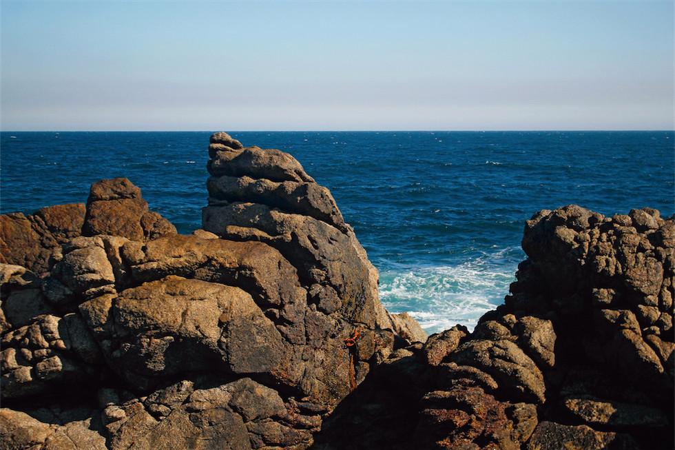 Roqueríos del Océano Pacifico – Región de Valparaíso – Chile. 2010