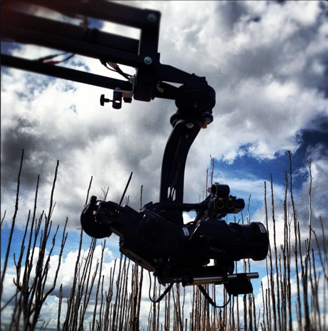 EX3 on EZFX Jib in Everglades