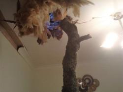 Tree Through Roof