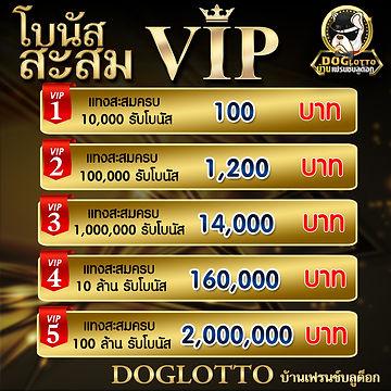 โบนัส VIP.jpg