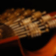 Portuguese_guitar_variations_(477082510)