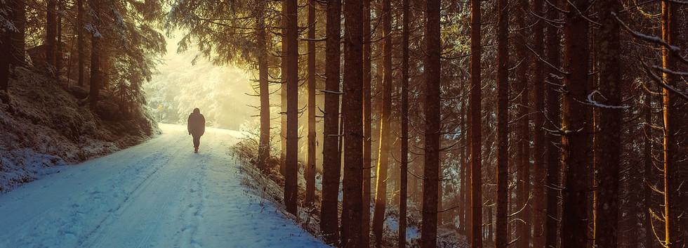 winter-David Mark por Pixabay.jpg