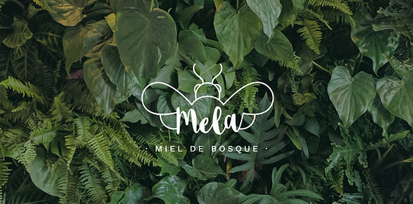 MELA-05.jpg