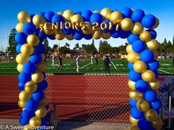 Seniors Sports Arch 2017