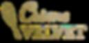 CV Logo White_edited.png