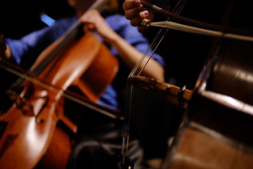 Double bass & cello