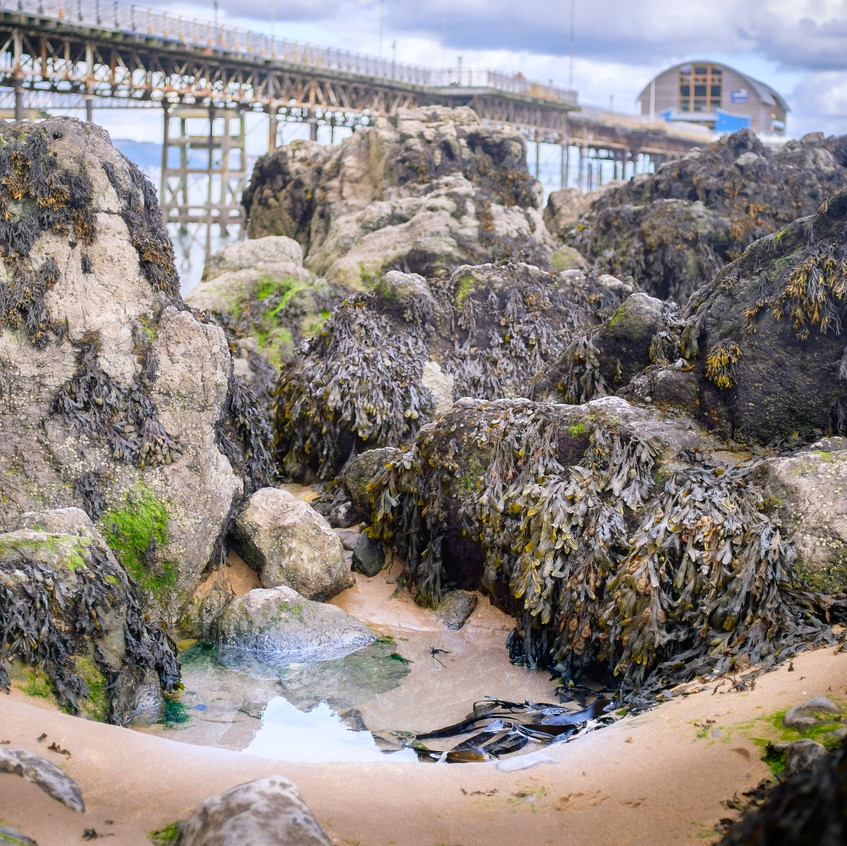 Mumbles Pier & rockpool-1