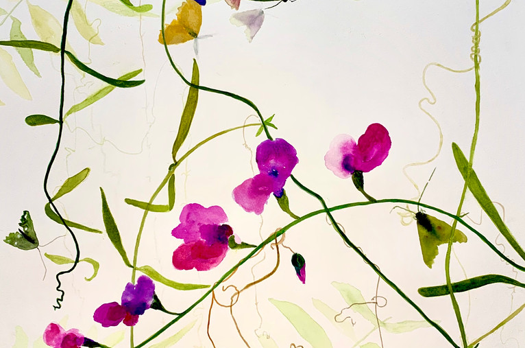 Flowers, Vines and Moths, 20x24, watercolor on paper, wood framed, $650