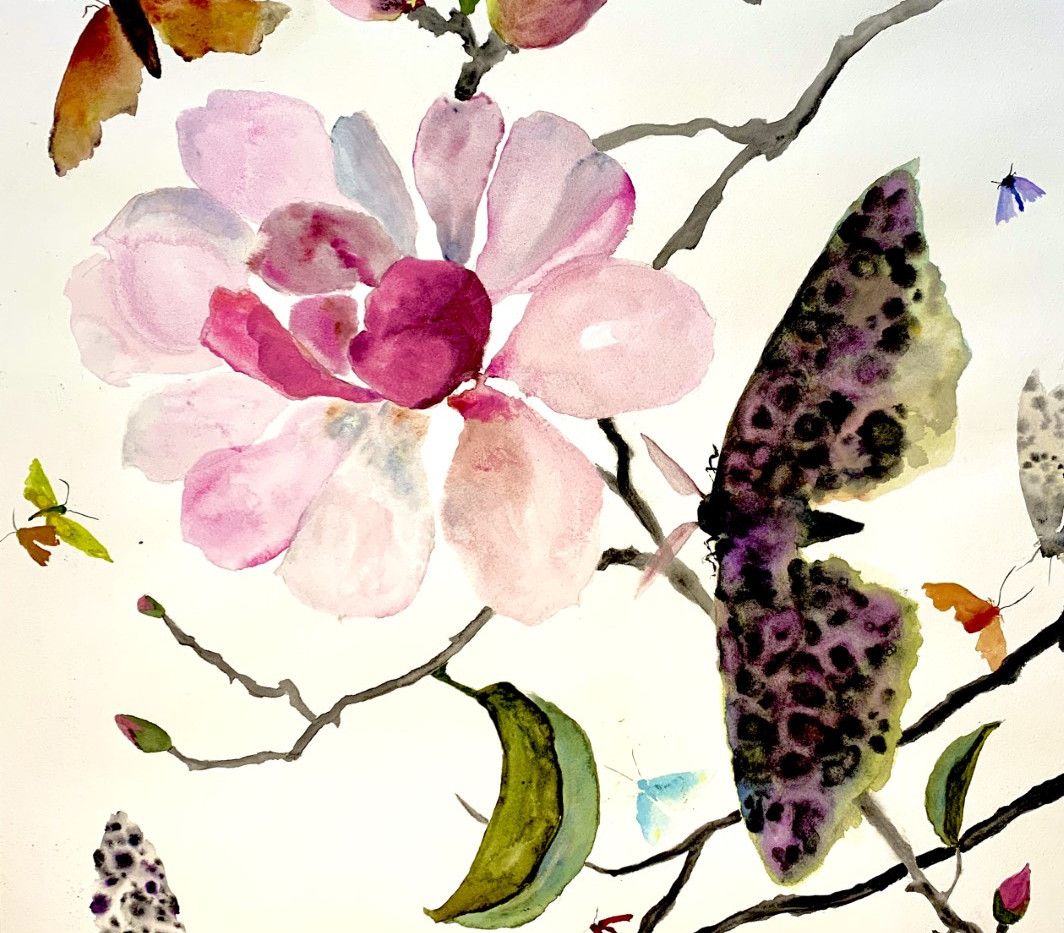 Moths and Magnolia, 20x24, watercolor on paper, wood framed $ 650