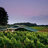 Hutton Vineyards_edited.jpg
