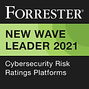 2021_Q1_Cybersecurity Risk Ratings Platforms_Badge.png