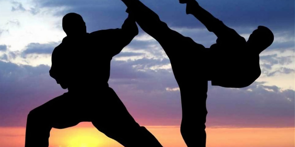 T3 R | Freestyle Martial Arts Programme