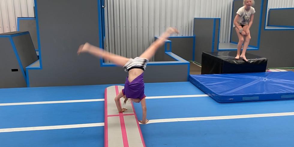 Cartwheels Basic - WIGRAM
