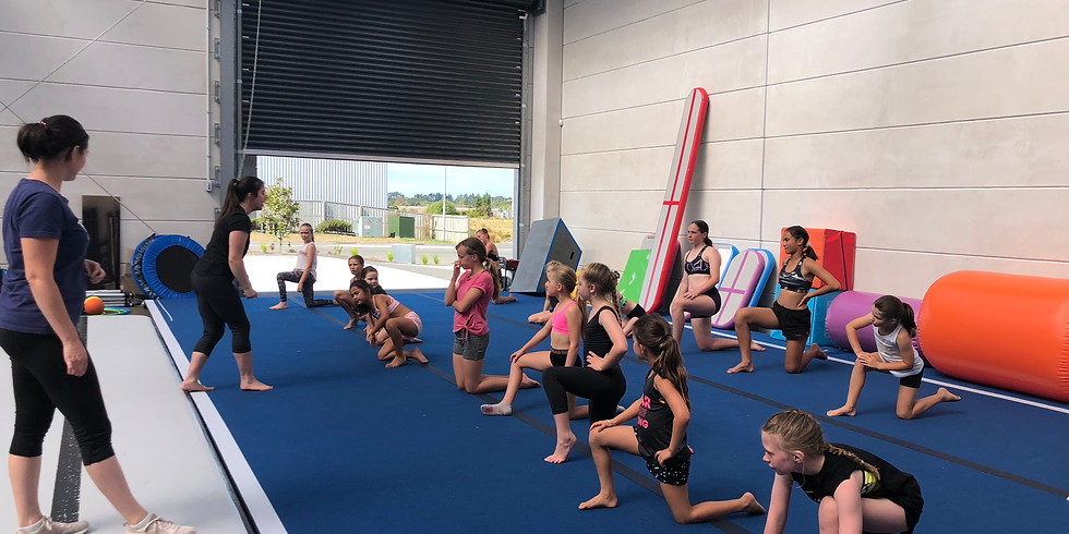 Acro Bootcamp -Wigram- 18th/19th January
