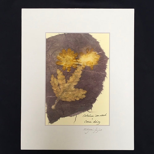Botanical print on Japanese paper, mat and backing inclu