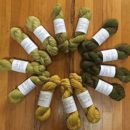 Dyer's polypore Mushroom dyed sport weight 100% wool yarn