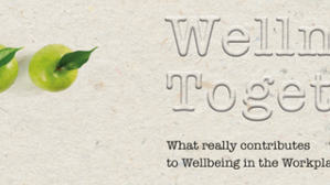 What really contributes to the Wellbeing in the Workplace?
