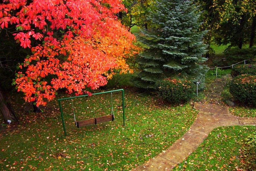 Retreat Center: Fall Foliage
