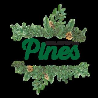 Pines Logo Final-01.png