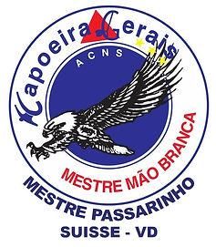 logo Gerais.jpg