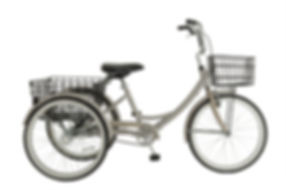 2017 Adult Tricycle-Champagne.jpg