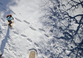 snow-shoe-hike-2875538_960_720.jpg