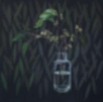 Stringybark buds.jpg