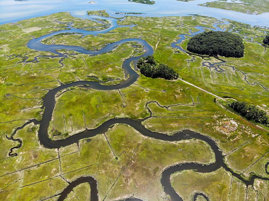 salt marsh edit.jpg