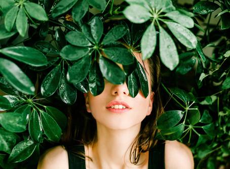 Ihre Hausverwaltung informiert: Was darf ich als Mieter eines Gartens, und was nicht?