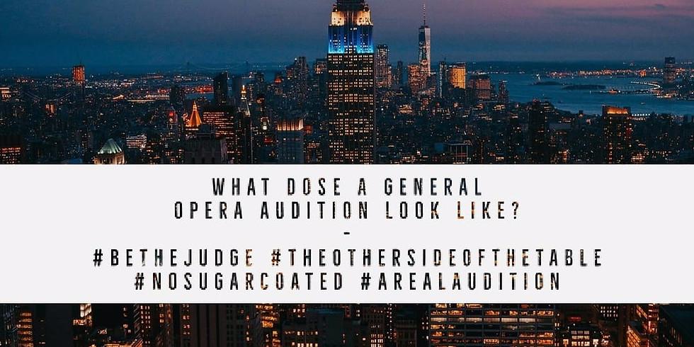 The Audition Concert - Soho Opera