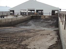 manure pit dairy.jpg