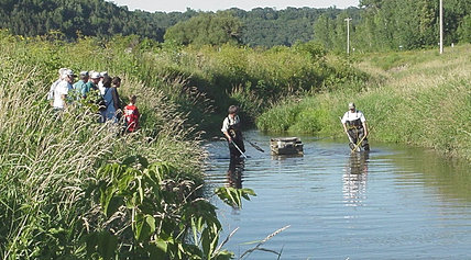 Goodhue soil and water conservation district mississippi for Lake pepin fishing report