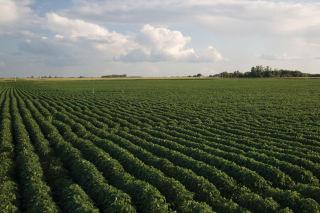 Private pesticide applicator re-certification