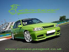 ecosse-ruggeri-309 green.jpg
