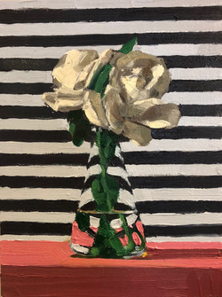 White Roses with Stripes