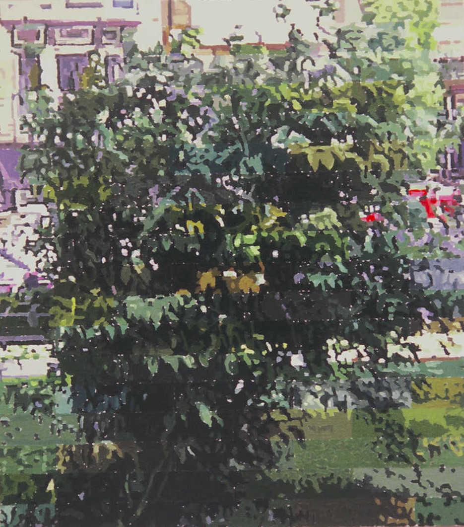 Sidewalk shrub