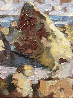 A Plymouth Rock #5
