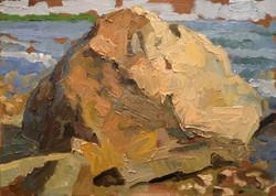 A Plymouth Rock #1
