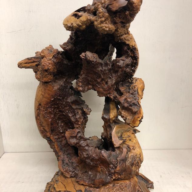 Burl Sculpture.jpeg