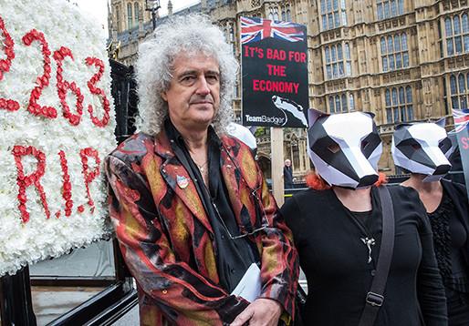 La visión ambiental de Brian May